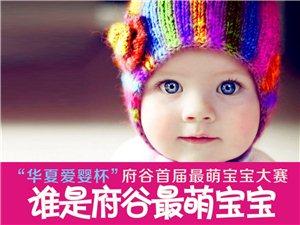 """""""华夏爱婴杯""""府谷首届最萌宝宝大赛05期"""