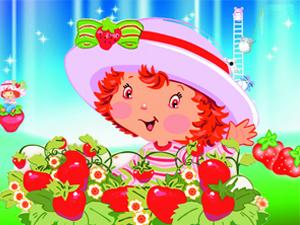 吃草莓活�娱_始啦~~!!!