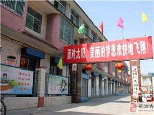 武功县红太阳特殊儿童康复救助示范项目启动仪式