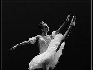 澳门威尼斯人游戏网址市金孔雀舞蹈学校