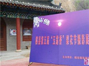 隰县第五届玉露香梨花节摄影展让人目不暇接
