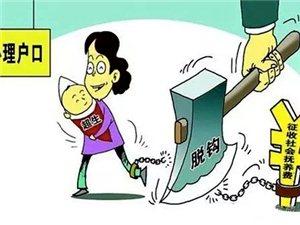 潮汕人周知!超生的子女落户不再罚款!广东政府新政!