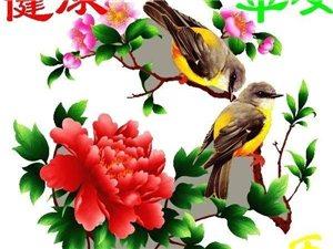 卜算子:恋春