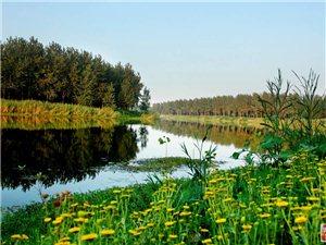 淝河的美景