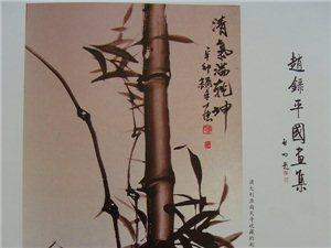 启功老先生为《赵录平国画集》题词