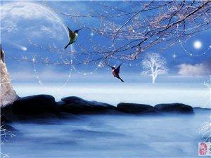 《月亮,静静的为你写首诗》(原创散文)