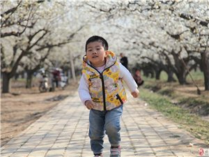 奔跑的童年