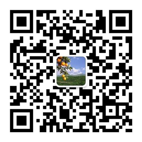 信丰县旅游局