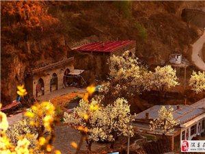 不是仙境胜似仙境--中国梨博园