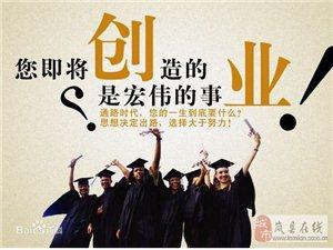 寻找大学生合作伙伴
