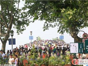 杭州西湖景区游客爆满 断桥上只见人头不见桥头