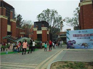 澳门美高梅网址巨型恐龙园尽在唐宁府!!!