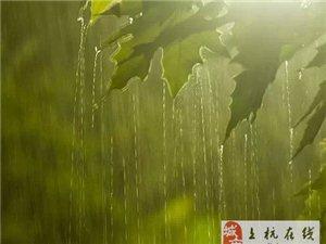 摄影技巧「雨天」