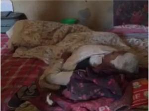 府谷武家庄:16岁放羊女父母双亡,辍学照顾瘫痪奶奶和10岁妹妹