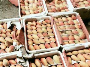 新鲜水果 内江城区范围内免费送货上门,芒果、榴莲价格实惠