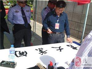 陵城区首届民俗文化艺术节