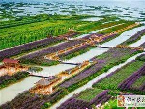 美女圈小编推荐:【风景】五月贵州最美的地方,据说大部分人都不知道