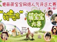 镇赉县艳丽幼儿园第一届网络明星宝宝大赛