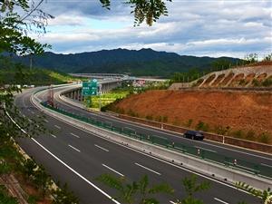 鲜花装扮的高速公路