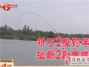 震惊淮北钓鱼界的大事!我伙呆,这鱼是要成精的节奏吗?!