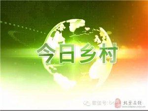 欢迎参与北票电视台新改版农村节目!