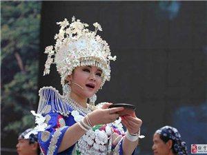 《2015年澳门新葡京官网苗族四月八姑娘节》集锦(正在更新中。。。)