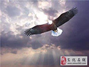 若想重生,像老鹰一样重生