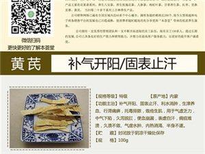 黄芪招商加盟.18379531156  小苏