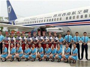 四川高校现20对双胞胎都是准空少空姐