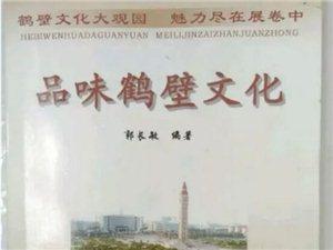 【顶起】有没有汤阴镇抚寨村的人??有没有姓李的人??李家出大事了