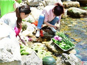 夏天――野炊烧烤季!