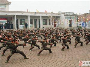 智龙武道馆――青少年武术培训简章