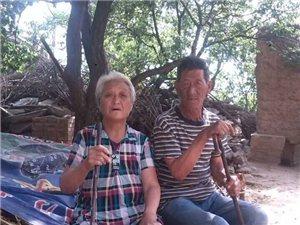 实名举报山西省澳门龙虎斗网站地区原平市东社王南窑村惨遭报复