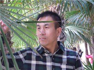 墨语轩主杨光磊