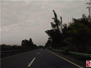 珠峰之旅图文日记(八):雅安,夜未眠