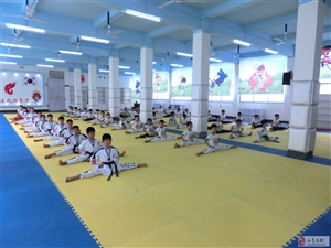 奥运风跆拳道馆暑假报名开始啦