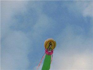 哪个挨千刀的放风筝,害得老子在这跪了半天