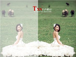 武都台北新娘婚纱摄影