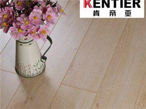 肯帝亚强化复合木地板高密度纤维地板松木地板耐磨性好