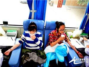 山西师大240余名学生集体无偿献血