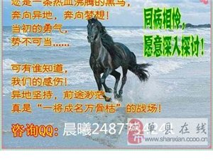 河北昌黎人际网络营销做起来顺利吗?为什么不坚持?