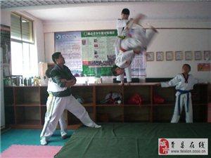 悟道跆拳道空翻特技班開課了歡迎您的加入