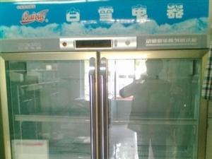 白雪SC-600F冰柜/冷藏 - 3800元