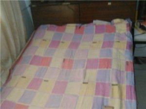 5张单人床出售,1M3张 1.2M两张 【电联】【