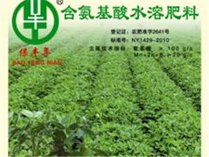 深圳保丰年高效叶面肥海南各市县招商