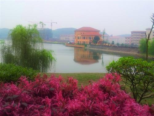 三湖生态城