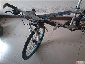 邹城单车批发