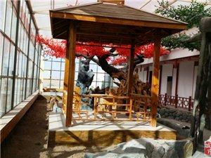 格尔木晟苑春生态园对外承包