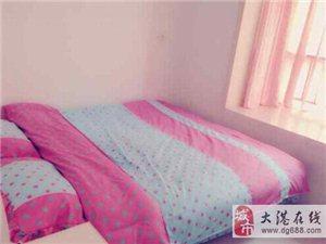 唐海温馨小户型日租房