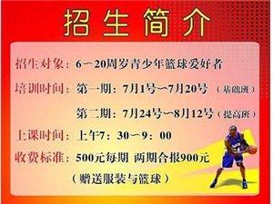 世紀飛揚籃球俱樂部籃球培訓班火熱招生中...